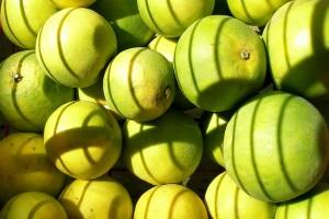 Co wchodzi w skład suplementów diety?